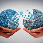 la co-innovación para empresas y organizaciones