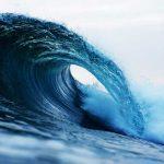 el poder de la resiliencia y cómo desarrollarla