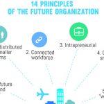 14 principios de la organizacion del futuro